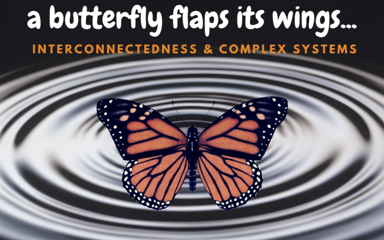 A Butterly Flaps Its Wings | Interconnectedness & Complex Systems