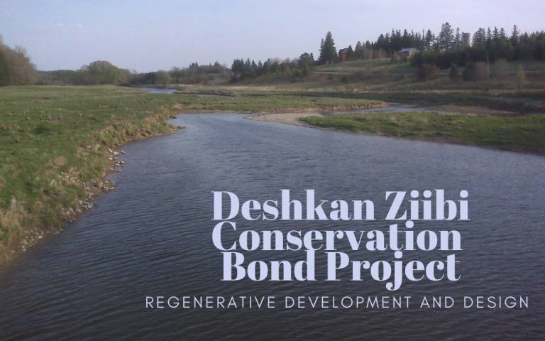 Protected: Regenerative Development | Designing for the Deshkan Ziibi Conservation Bond Project
